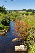 picture of devonshire  - Postbridge ancient clapper bridge at in Dartmoor National Park Devon England UK - JPG