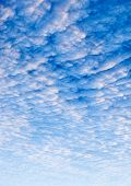 stock photo of stratus  - A cloud sunset background blue and pink - JPG