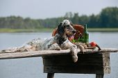 picture of english setter  - setter with hunting bird and accessories horizontal outdoors - JPG