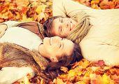 stock photo of romantic love  - holidays - JPG