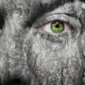 foto of smut  - Conceptual image of a face with a scared grey skin - JPG