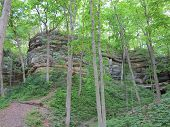 stock photo of starving  - Spring Time Trees along one of the Box canyons at Starved Rock State Park