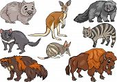 image of wolverine  - Cartoon Illustration of Funny Wild Animals Characters Set - JPG
