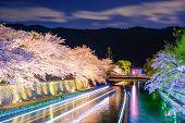 stock photo of night-blooming  - Kyoto - JPG