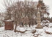 stock photo of kiev  - Public garden in Kiev in the Japanese style done in honor of the sister city of Kiev Kyoto on winter - JPG