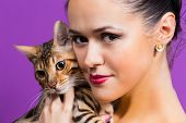 foto of bengal cat  - Young attractive woman holding a Bengal cat - JPG