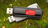picture of usb flash drive  - Usb flash drives on the grass background - JPG