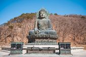 foto of seoraksan  - Buddha in the Sinheungsa Temple at Seoraksan National Park South Korea - JPG