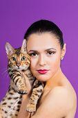 foto of bengal cat  - Beautiful young girl holding a cat - JPG