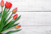 stock photo of bittersweet  - Red tulips flowers bouquet on old white wooden background - JPG