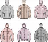 stock photo of down jacket  - Vector illustration of women - JPG