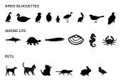 Many Animals Silhouettes poster