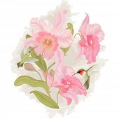 picture of colibri  - Vector card with a branch orchid and birds colibri - JPG