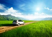pic of grassland  - ground road and blurred car - JPG