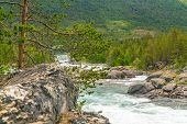 Mountain Wild River Valley Landscape. Mountain River Flowing Through The Green Forest. Panoramic Vie poster