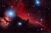 image of hydrogen  - Horsehead Nebula and Flaming Tree in the Constellation Orion - JPG