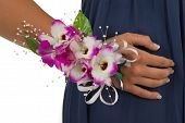 stock photo of senior prom  - Prom corsage with elegant orchids and manicured hand - JPG