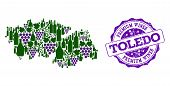 Vector Collage Of Grape Wine Map Of Toledo Province And Purple Grunge Stamp For Premium Wines Awards poster