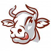 Head of Licking Cow. Stylized Drawing. Vector Illustration
