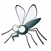 image of gnats  - funny mosquito illustration - JPG
