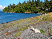 image of orca  - A small gravel beach is one of few public access points to the ocean on Washington - JPG