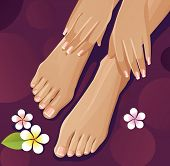 stock photo of french manicure  - Healthy hands and feet with french manicure and pedicure - JPG
