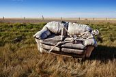 stock photo of discard  - A beer stained party couch haunted by parties past discarded in a ditch on a rural prairie road - JPG