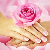 picture of french manicure  - Beautiful woman - JPG