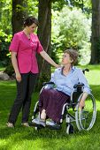 stock photo of street-walker  - Elderly woman in a wheelchair with a nurse in the park - JPG