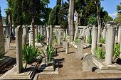 stock photo of cemetery  - ISTANBUL TURKEY  - JPG