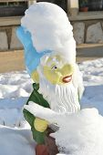 stock photo of gnome  - Garden gnome covered with clear white snow on the sunny winter morning - JPG