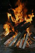 pic of flames  - Fire logs in flame - JPG
