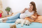 image of golden retriever puppy  - Pregnant woman writing notes with golden retriever puppy at home - JPG