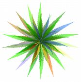 foto of maryjane  - Abstract image of the leaves of grass - JPG