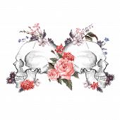image of day dead skull  - Roses and Skull - JPG