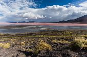 picture of incredible  - Scenery when touring the Incredible Uyuni Salt Flats In Bolivia - JPG