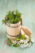 picture of tub  - wooden tub - JPG