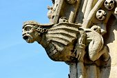 stock photo of gargoyles  - Stone gargoyle on church spire with blue sky background - JPG