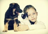 pic of puppy kitten  - a child and a kitten and a puppy - JPG