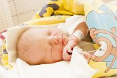 foto of maternal  - portrait of a newborn baby girl in maternal hospital - JPG