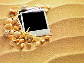 foto of beach shell art  - Summer like old style empty photo cards lying on a sea sand and framed with shells - JPG