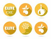 stock photo of olive shaped  - Set of six icons with olives - JPG