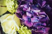 image of hydrangea  - Big bouquet of fresh flowers - JPG