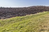 stock photo of prairie  - A prairie fire burned away most of the plant life leaving only a little grass - JPG