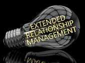 picture of customer relationship management  - Extended Relationship Management  - JPG