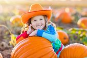 Child Playing On Pumpkin Patch poster
