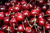 picture of cherry-picker  - A bunch of ripe cherries ready to eat - JPG