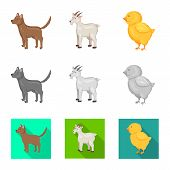 Vector Illustration Of Breeding And Kitchen  Sign. Collection Of Breeding And Organic  Vector Icon F poster