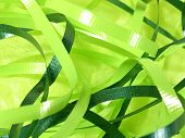 Green Ribbons poster