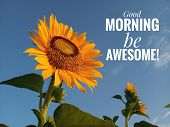 Morning Inspirational Motivational Quote- Good Morning, Be Awesome. With A Beautiful Smiling Sunflow poster